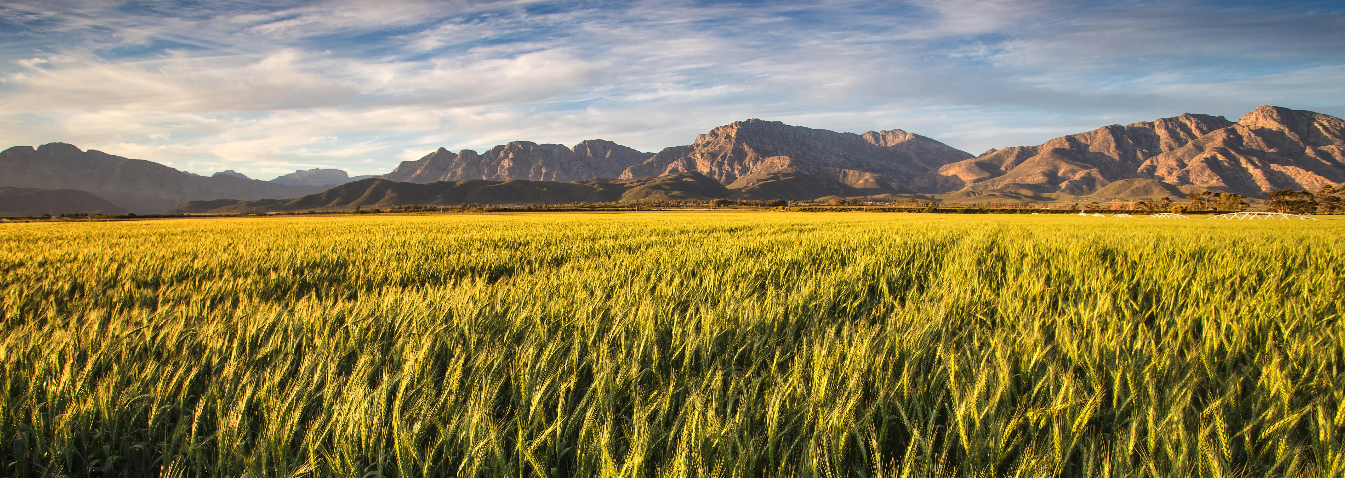Farm Insurance Ogden Utah